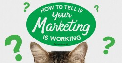 How to Tell If Your Marketing Is Working