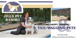 Jill's Pet Resort: Creating Happy Owners & Tail-Wagging Pets