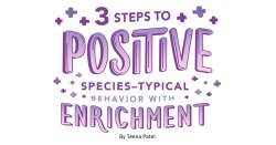 3 Steps to Positive Species-Typical Behavior with Enrichment