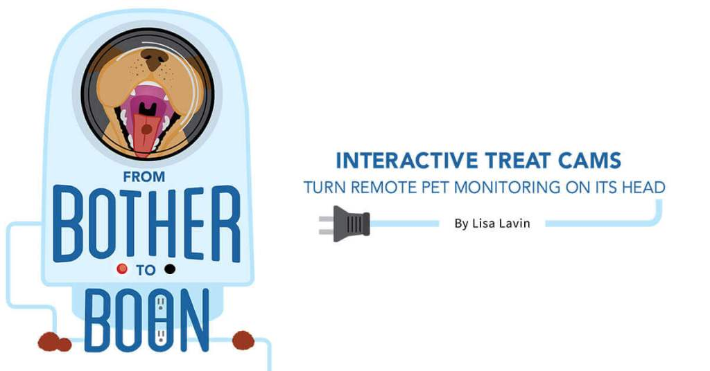 From Bother to Boon: Interactive Treat Cams Turn Remote Monitoring on Its Head