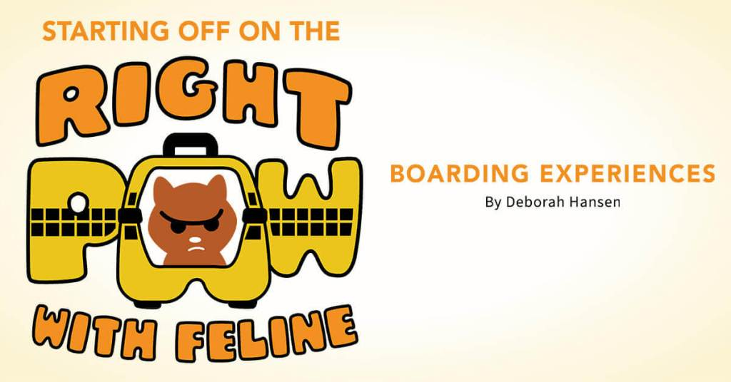 Starting off on the Right Paw with Feline Boarding Experiences