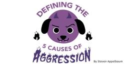 Defining the 5 Causes of Aggression