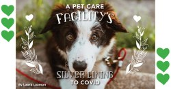 A Pet Care Facility's Silver Lining to COVID