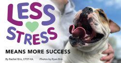 Less Stress Means More Success