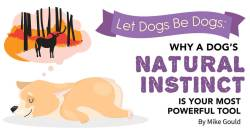 Let Dogs Be Dogs: Why a Dog's Natural Instinct Is Your Most Powerful Tool