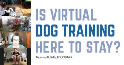 Is Virtual Dog Training Here to Stay?