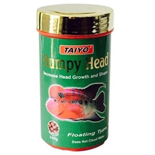 taiyo humpy head fish food