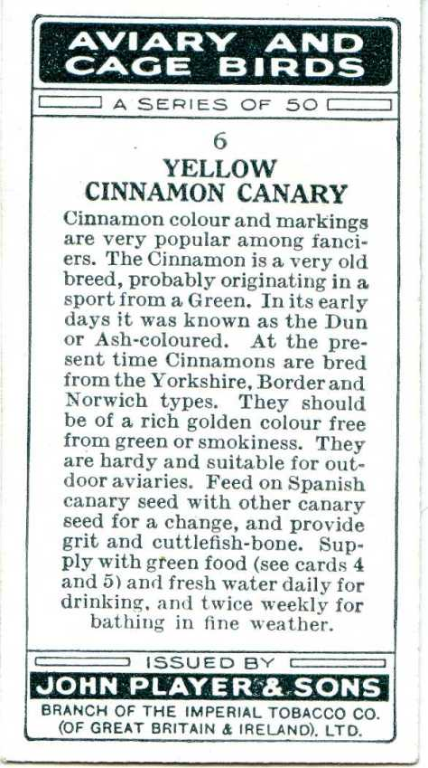 Yellow Cinnamon Canary — AVIARY AND CAGE BIRDS UK CARDS (1933)