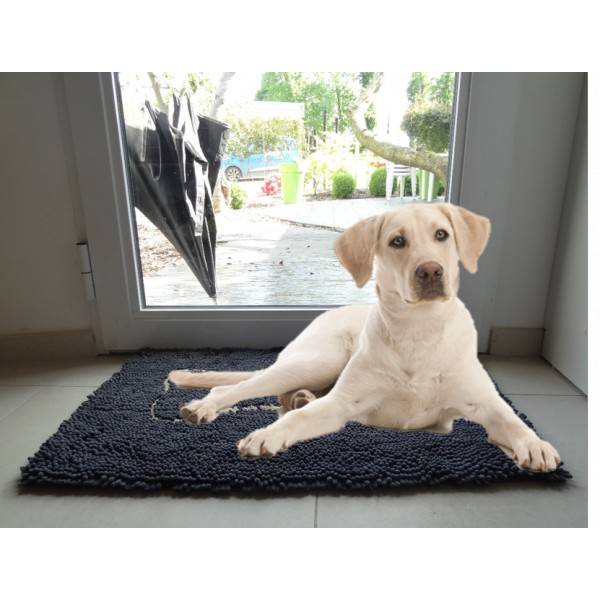 cleany tapis super absorbant chien