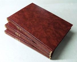 Kirjansidonta-vuosikertasidonta