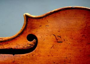 1629 Girolamo Amati. Without doubt, one of the richest, most expressive instruments it has been my privilege to play