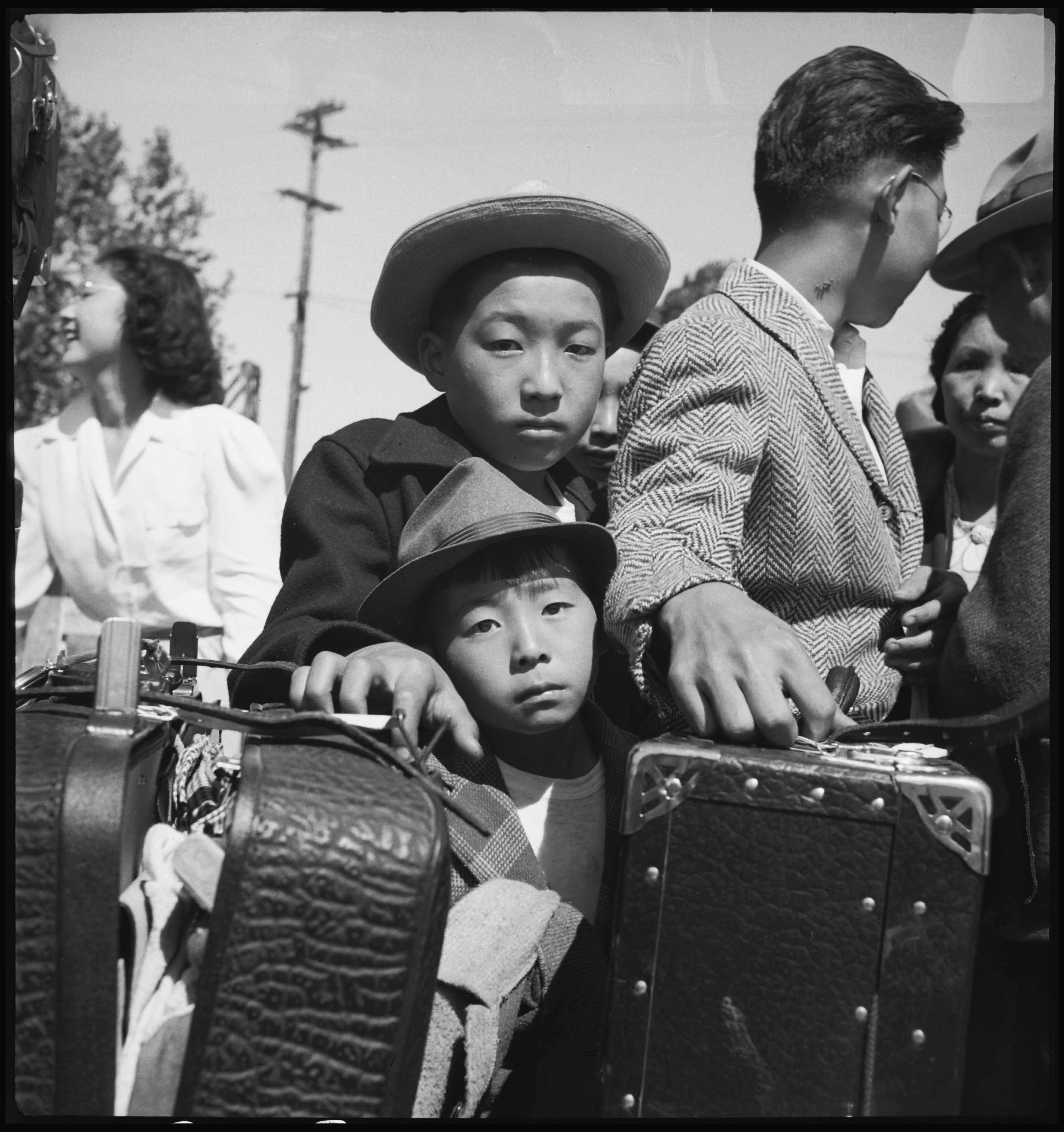 a report on the incarceration of the japanese americans in america Despite history, japanese americans and african americans are working together to columnist rev hamilton t boswell consistently called for cooperation between communities of color and condemned the incarceration of japanese americans as the greatest disgrace of america abroad.