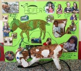 Poster for Heifer International
