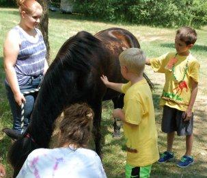 Pony Farm 10