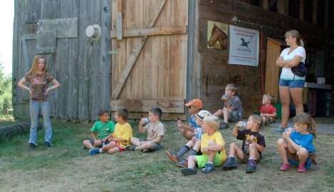 Pony Farm 11