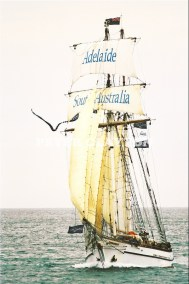 TALL SHIP - 'ONE & ALL' #1 R4