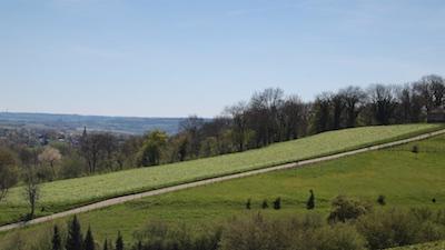 De Keutenberg gezien vanaf de Sousberg