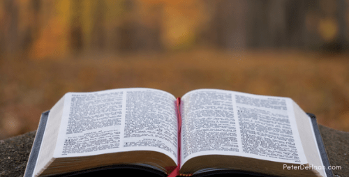 What's the Focus of Your Bible Reading for 2015?