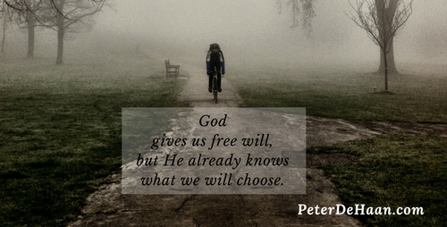 How Can Free Will and Predestination Coexist?