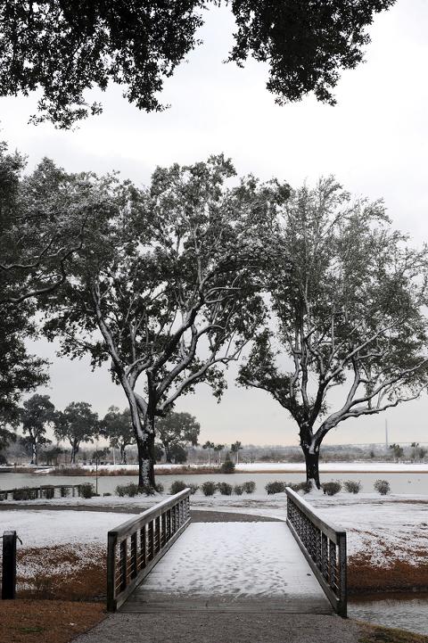Snow In Charleston Daniel Island SC Snow