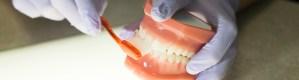 dental...