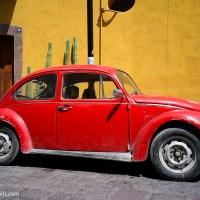 Photos from San Luis Potosi