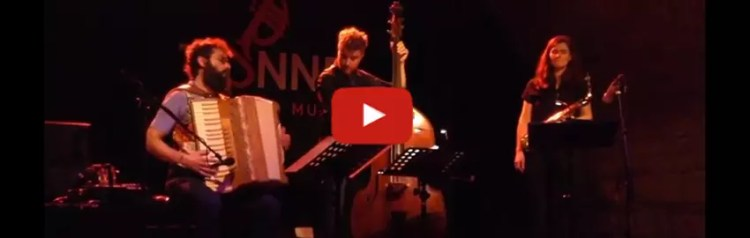 Video Link: Simone Zanchini on stage