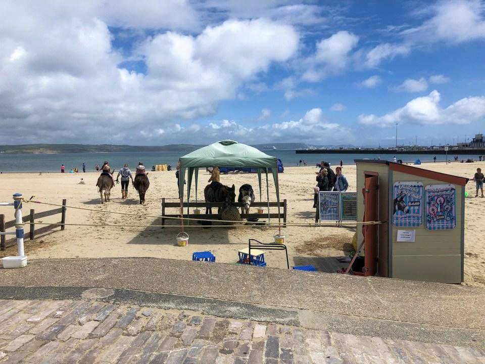 Donkey's on Weymouth Beach (Peter Moore)