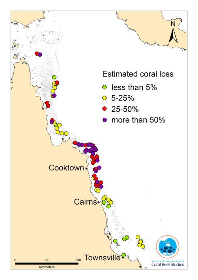 map GBR bleaching 2016 Coral COE