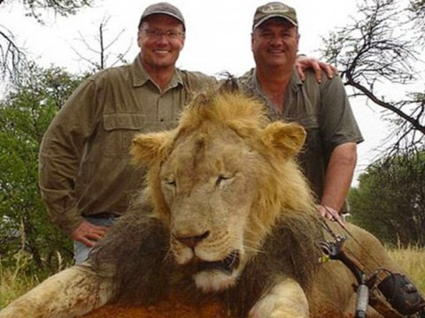 walter palmer and earlier kill cecil-lion