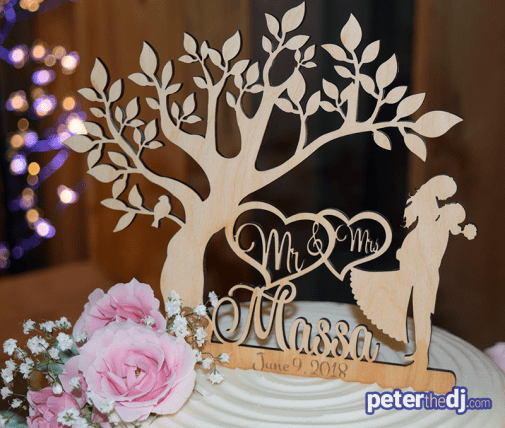 Cake topper at Kimberly and Giovanni's wedding at Wolf Oak Acres in Oneida, NY, June 2018
