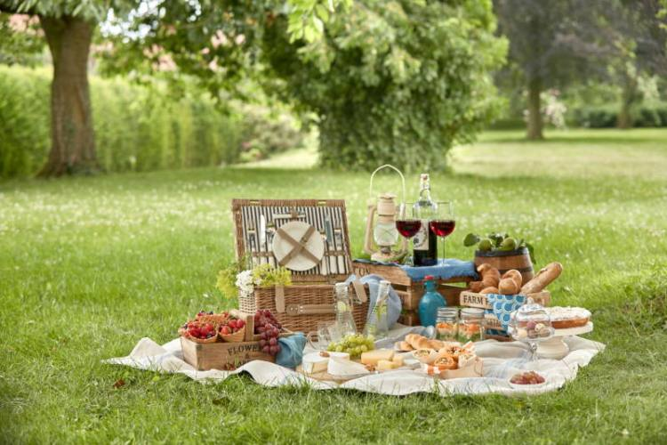 The disastrous picnic
