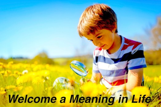 Welcome A Meaning In Life min