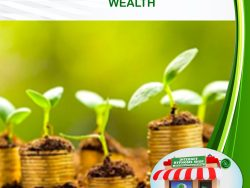 Finance and Attracting Wealth