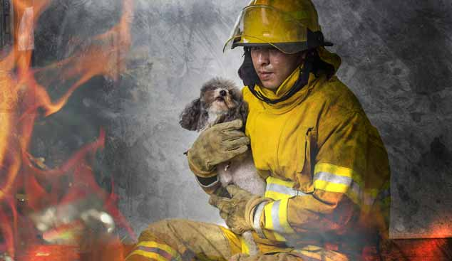 Picture of of a fireman holding a dog