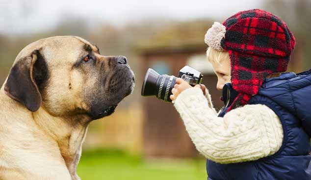 Picture of boy taking a picture of a dog