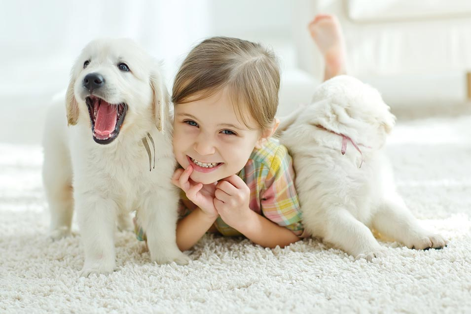 Picture of girl and two puppies laying on the rug