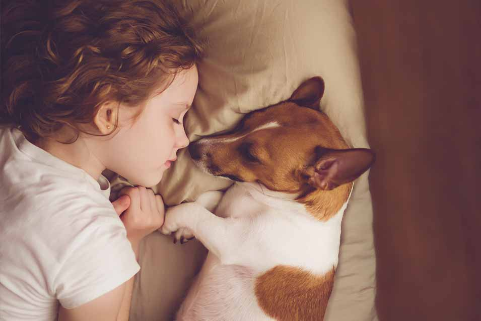 Picture of a girl and dog sleeping