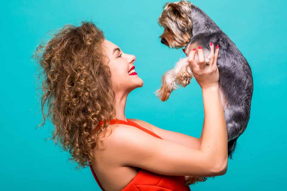 Picture of woman holding a Yorkshire Terrier