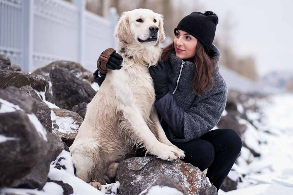 Picture of Golden Retriever and woman during winter