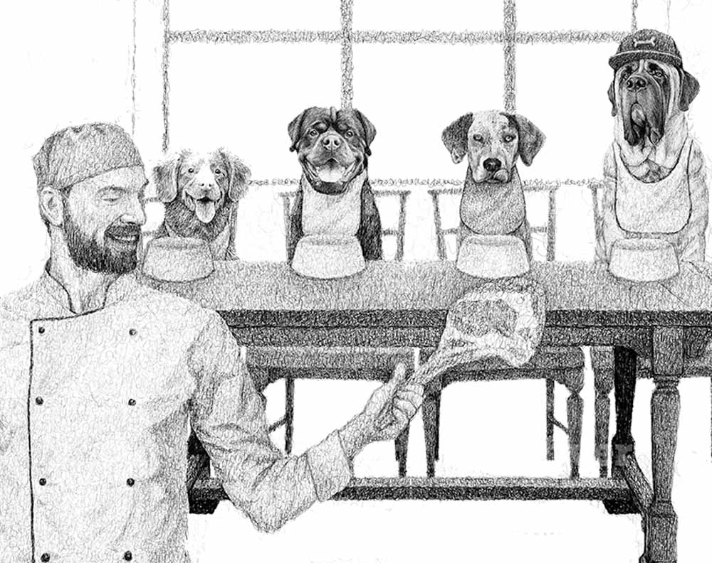 4 dogs at the dinner table