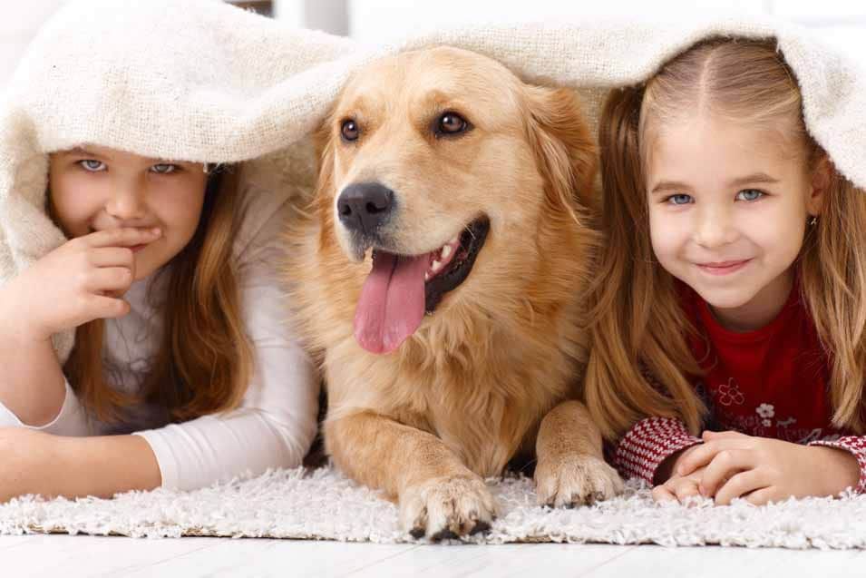 Picture of 2 girls and a Golden Retriever