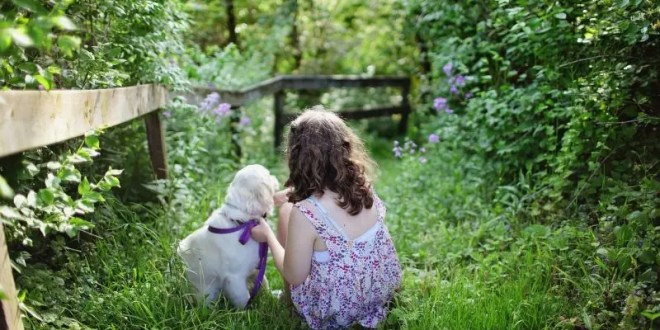 Children love pets more than siblings, says new study