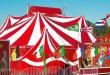 Circuses, Scotland, wild animals