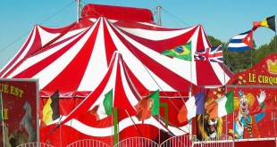 Circuses, Scotland, wild animals