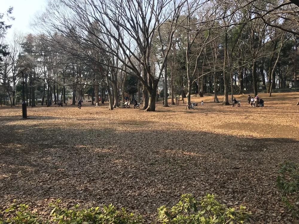 芦花公園ドッグラン