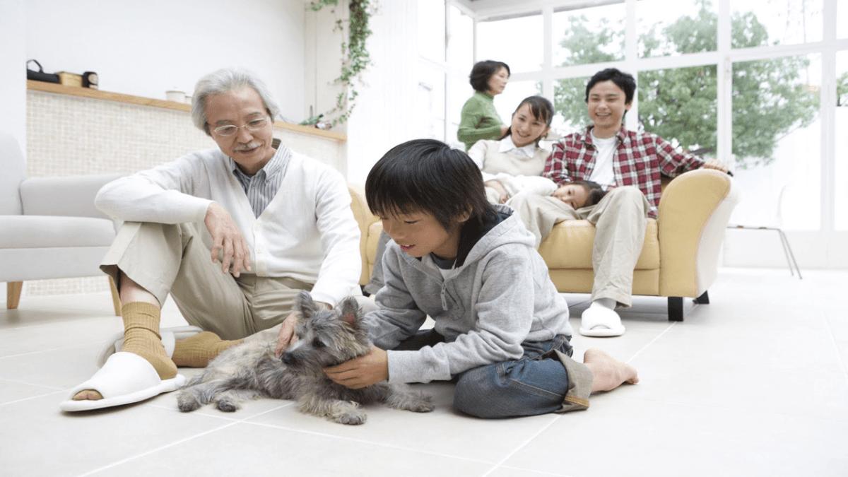 家族で犬をかわいがっている姿