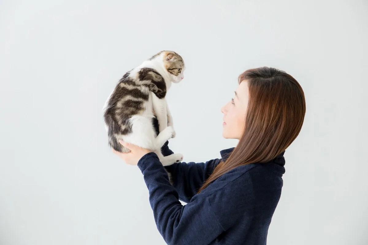 猫 抱っこ 飼い主