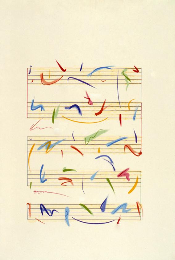 Suite Birds of Paradise – Arara