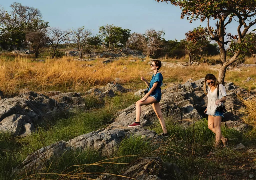Jungle safari by walking made your day